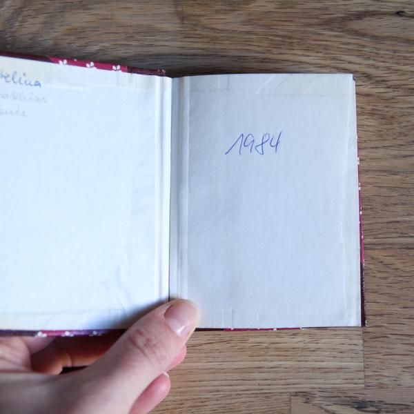 Tagebuch Gabi Lischker 1984